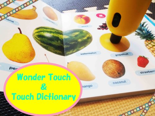 Wonder Touch Touch Dictionary