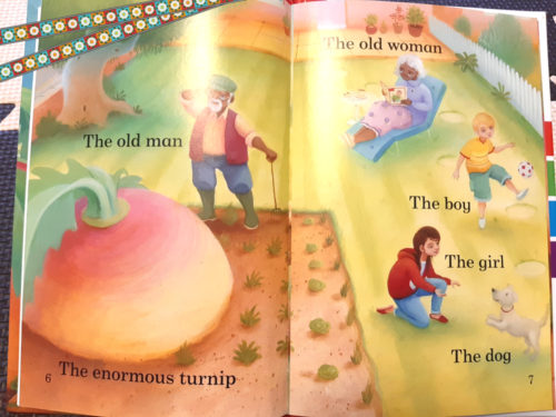 enormaus turnip picture book